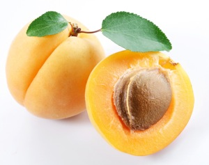 apricot[1].jpg