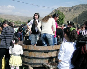 Armenia _Areni Wine Festival, Vayots Dzor, 17Oct2010