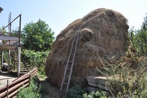 Armenian_Village_Life
