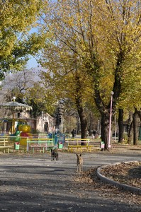 Autumn in Vanadzor Park