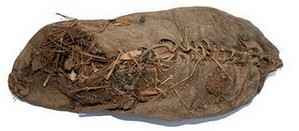 Oldest shoe in the world