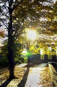 Yerevan_autumn